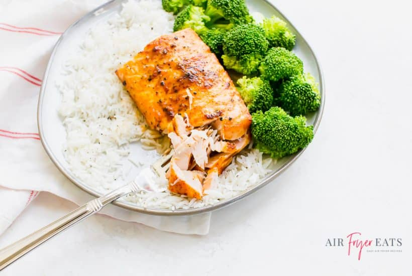 salmon on a round plate with rice and broccoli