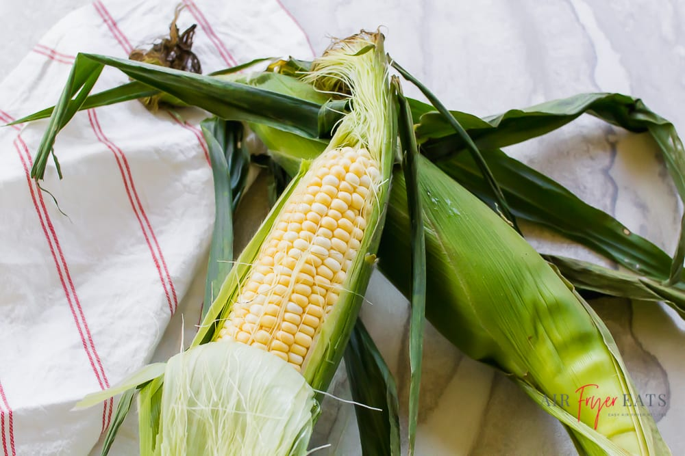 picture of two ears of corn with husks on. One ear has husk pulled back so you can see the bi color kernals.