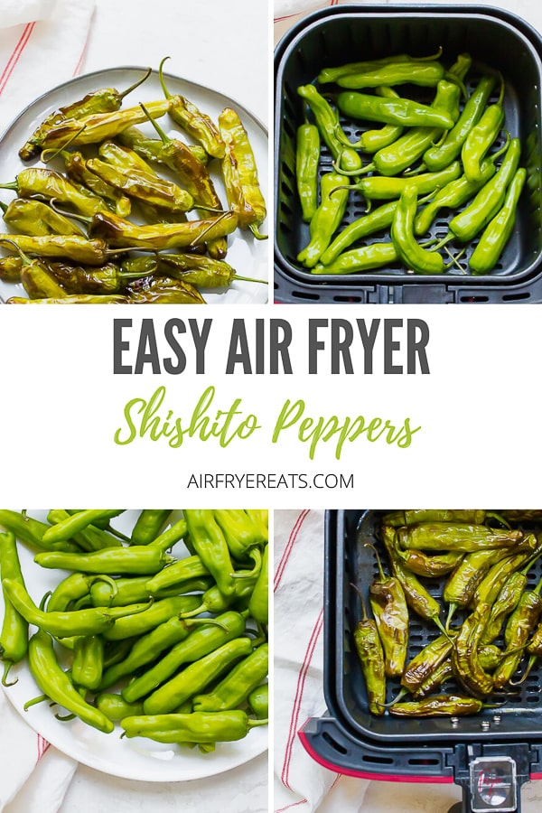 Air Fryer Shishito Peppers are a quick and delicious air fryer recipe. These blistered peppers are mild and make the perfect appetizer. You are going to fall in love with how easy this shishito pepper recipe is to make. #shishitopeppers #airfryerrecipes #airfryerpeppers via @vegetarianmamma