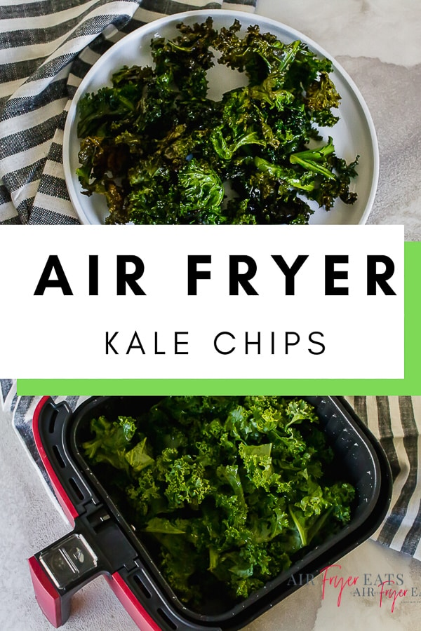 "These Air Fryer Kale Chips are done so fast your family won't know you've cooked! Just four staple ingredients and 10 minutes between you and crispy, healthy ""fried"" veggies! #airfryerkalechips #kalechips #vegan via @vegetarianmamma"
