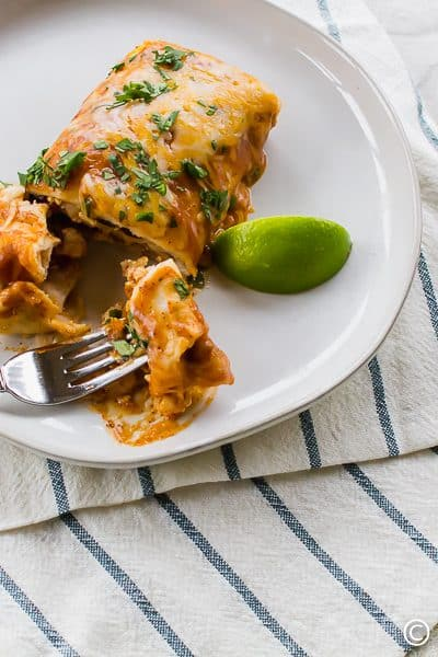 vegetarian enchiladas with a lime wedge on a white plate with a fork