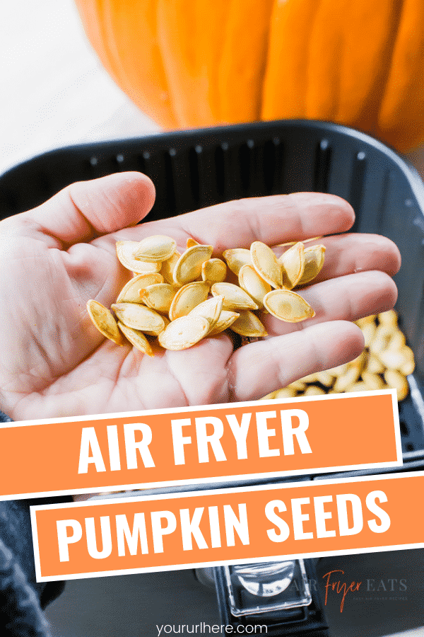 Air Fryer Pumpkin Seeds are a delicious crunchy snack your entire family will enjoy! After you carve your pumpkins toss the seeds into the air fryer for a crisp snack! #pumpkinseeds #pumpkinfood #pumpkin #airfryerpumpkin #airfryersnacks #airfryer recipe #airfryerpumpkinseeds via @vegetarianmamma