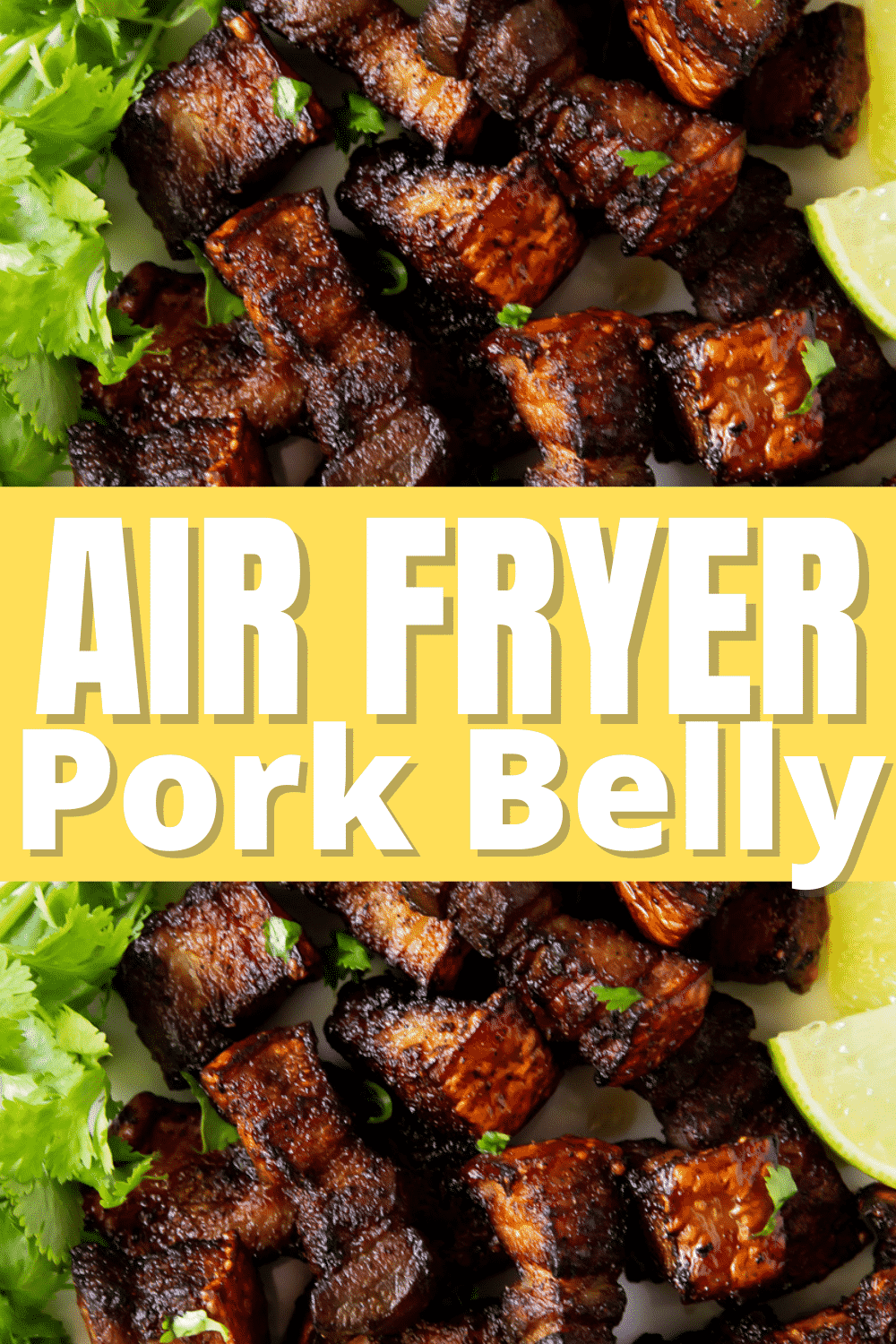These little bites of Air Fryer Pork Belly are crispy, salty, and absolutely delicious. They will melt in your mouth with amazing flavor and texture. #pork #airfryer #porkbelly via @vegetarianmamma